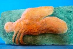 Fósil avispa